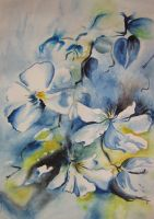 Flowers Aquarell by CariLo