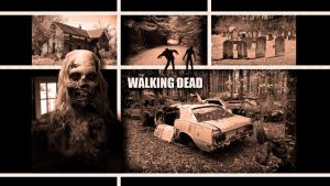 The Walking Dead Wallpaper by GregKmk