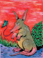 Animal Alphabet Reward: Aardvark by oh-the-humanatee