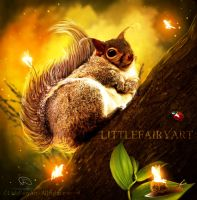 Squirrel by LittleFairyArt