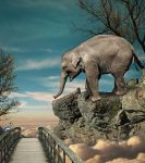 Elephant In The Sky by Splat-Shot