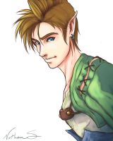 Ordon Link by NathanSero