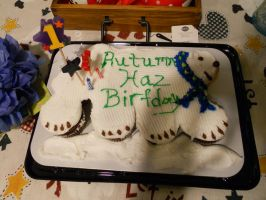 my birth day cake by autumn2010
