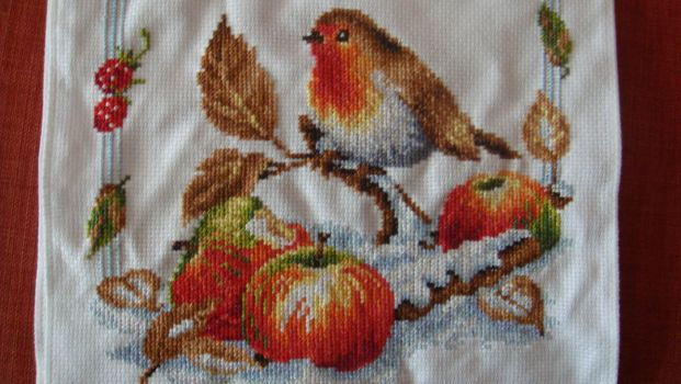 Winter Robin cross stitch by Anim-Soul