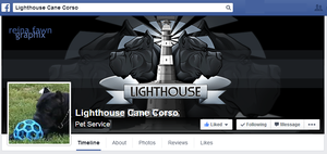 Lighthouse Cover Photo by reinafawn