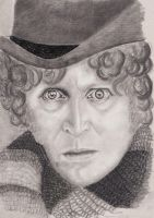 4th Doctor Tom Baker 3 vs 2 by rhizin