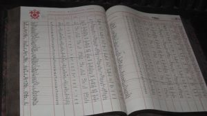 Gringotts Ledger by Arachnoid