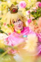 Princess Peach by Reould