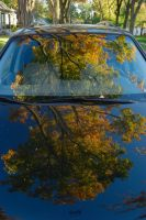 Fall Reflections by redwolf518