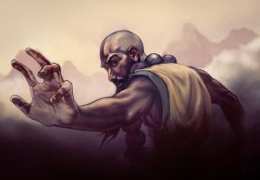 Diablo 3 Monk Fan Art by Muzuen