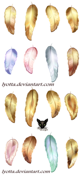 Golden and colorful bird feathers by Lyotta