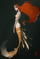 Siren by CamaraSketch