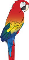 Macaw - vectorised by RadiantCharizard