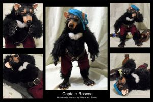 Captain Roscoe by WormsandBones