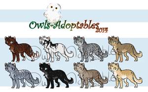 Adoptables - Kittens 01 - CLOSED by Tawnee-Owl
