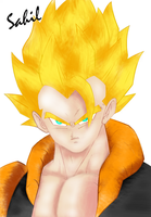 Gogeta_by_SS-00 by SS-00