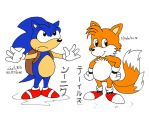 Sonic +  Tails Colour by gato303co
