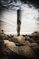 the last man standing by matze-end