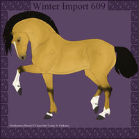 Winter Import 609 by ThatDenver
