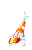 Another koi by Endber