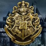 Camelot School of Witchcraft and Wizardry pin by Prue84