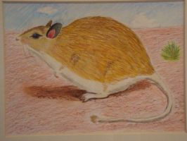 Desert Mouse, and Shrub by CakeandCaboodle