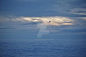 Ocean of Clouds II by TheBirdsFeathers
