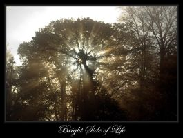 Bright side of life by SmartyPhoto