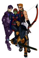 Young Justice Commission by Testament-Ferenand