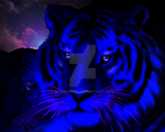 Dark Blue Tigers by Bluedarkat