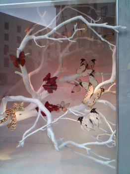 Butterfly Window Display on Rodeo (Red) by LilinaFaerie