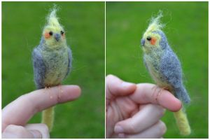 Felted Cockatiel by dragongirlhellfire