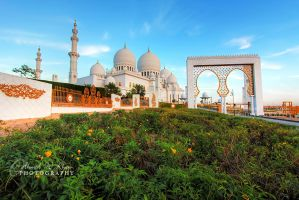 Sheikh Zayed Grand Masjid by ahmedwkhan