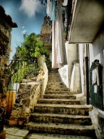 steps on Scilla by Odraz