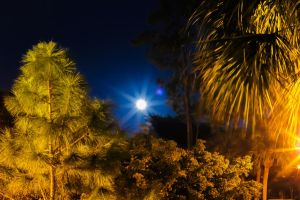 Full Moon Rising by V-E-S-P-E-R-T-I-N-E