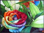 Marker - Rose by Shahtrughna