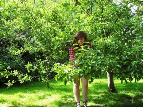 in the orchard by Reginald-Tribianni