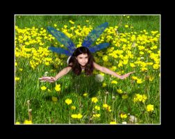 Buttercup Fairy by BFG