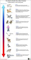 How much animals care about humans... by Terraced-Fields