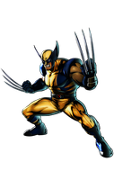 Ultimate MVC3 Wolverine by heatheryingNL