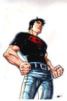 21 Pinups N 20 Days: SUPERBOY by RAHeight2002-2012