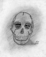 Skull Sketch by Mysterious-Master-X