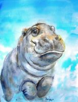 Baby hippo by tomoyo696