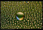 Condensation by Silver-Dew-Drop