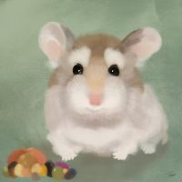 Harvest Hamster-- Fall is almost here :) by VisualCondyle