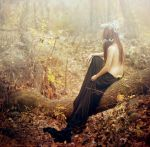 dissolving in the autumn wood by Laoden