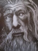 Gandalf-The Hobbit - drawing by tofu0004