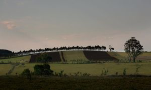 Near Trentham, Vic. by lawrencew