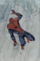 The Amazing Spiderman by MikeOppArt