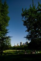 NYC Series - Central Park by Katastrophey